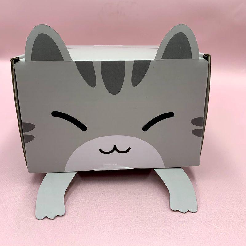 Коробка подарочная Котик