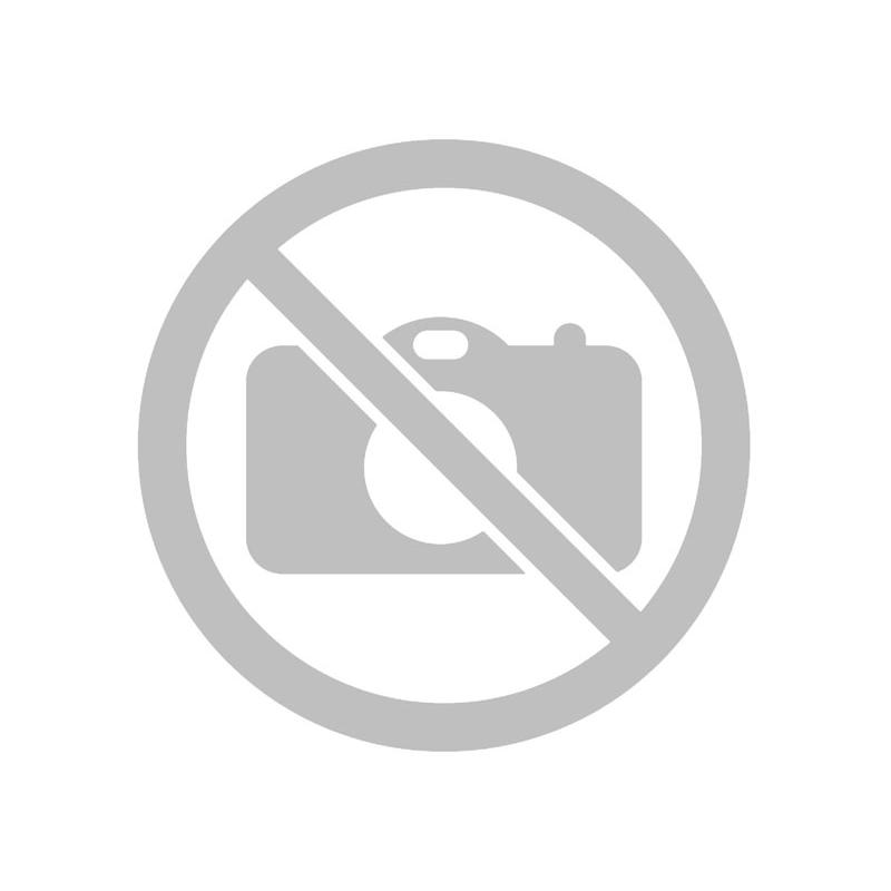 Школьный Ранец на колесах Класс Лисенок Зеленый